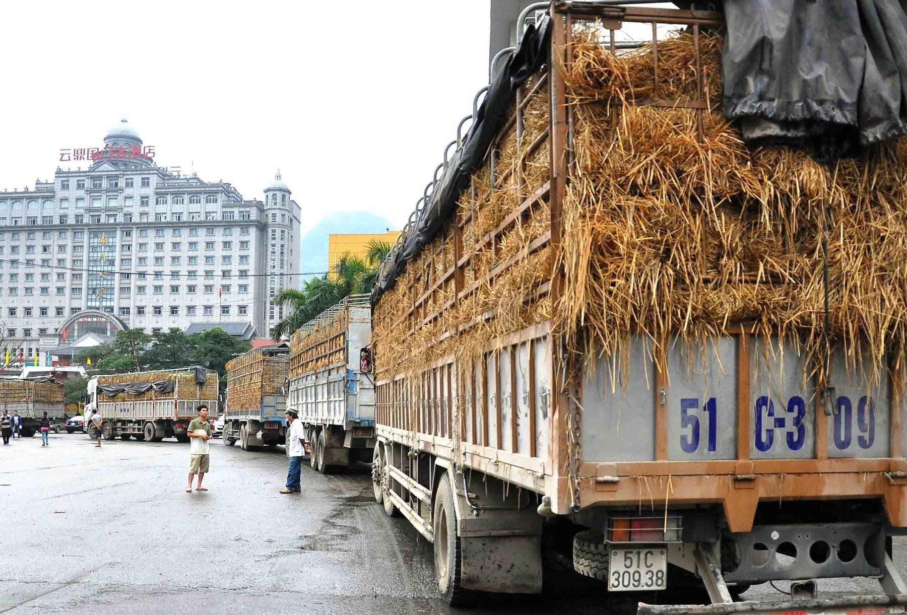 Dịch vụ vận chuyển hàng nông sản xuất khẩu giá rẻ