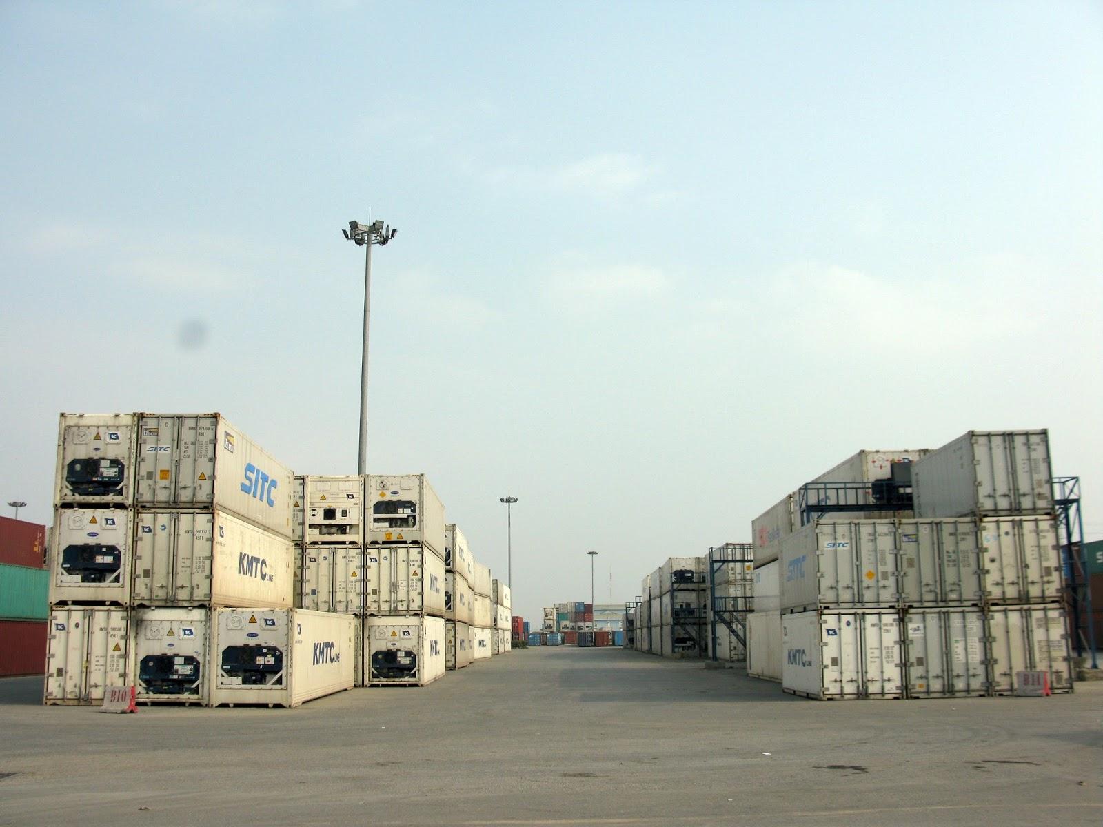 ViettelCargo có container lạnh phục vụ chuyên chở hàng đông lạnh xuất khẩu