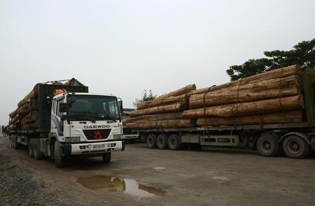 Dịch vụ vận chuyển đồ gỗ xuất khẩu nhanh, giá rẻ, uy tín