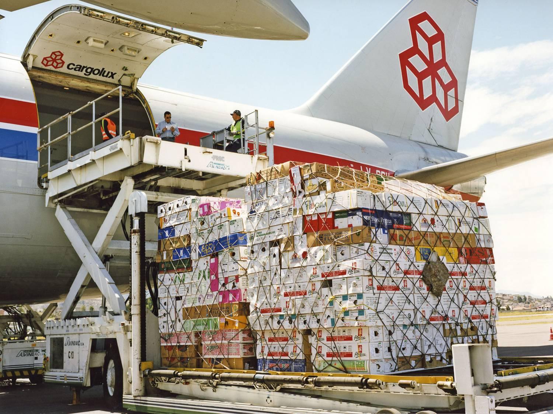 Viettel cargo tổ chức vận chuyển trái cây hoa quả sấy khô sang Manila