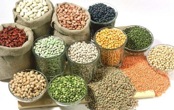 Dịch vụ vận tải thực phẩm khô Bắc Nam