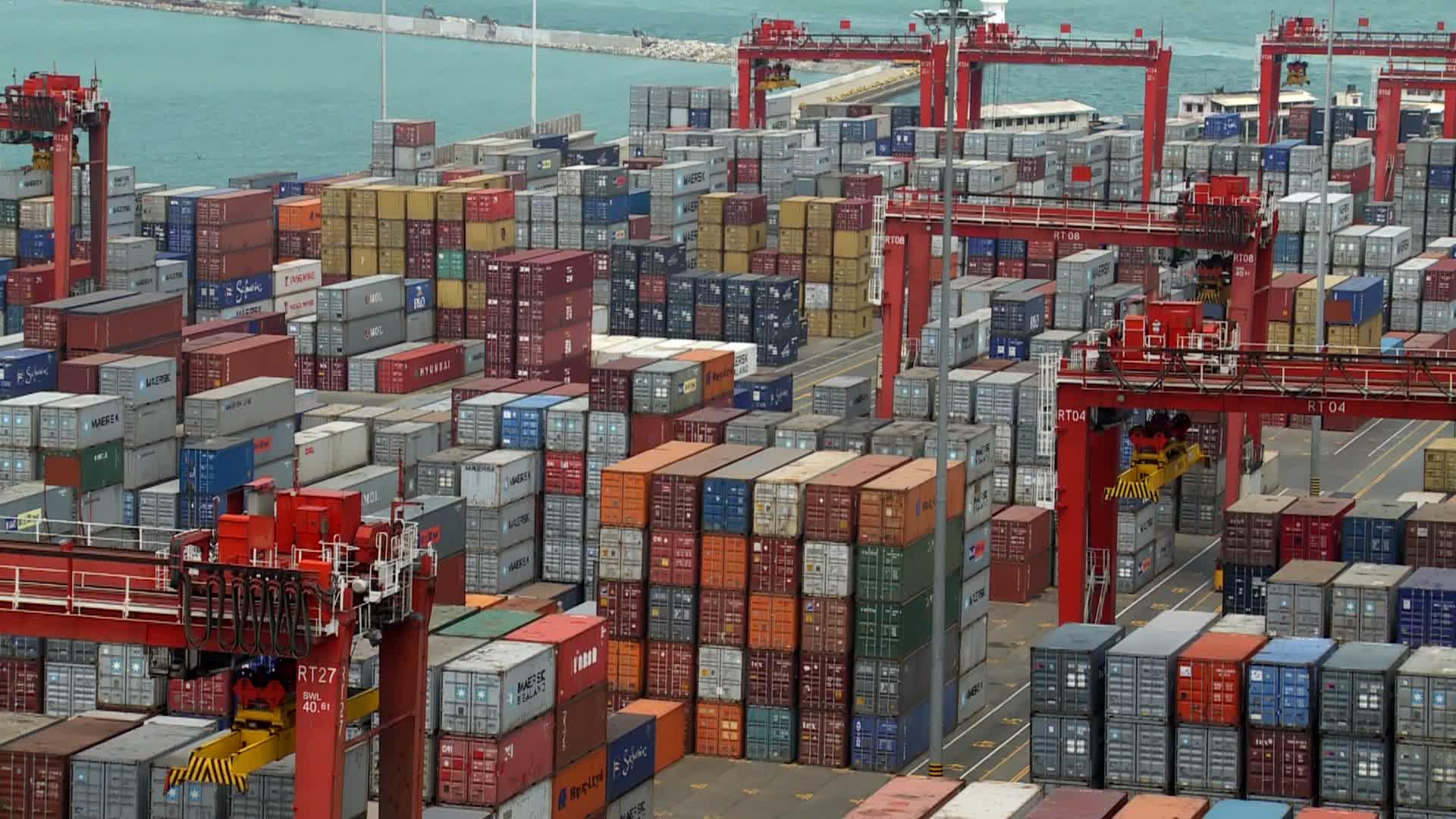 Dịch vụ tư vấn xuất khẩu miễn phí của ViettelCargo
