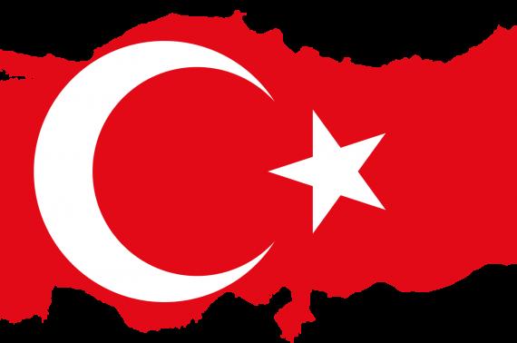 Dịch vụ chuyển phát nhanh UPS uy tín, giá rẻ – chuyển đồ, hàng hóa sang Thổ Nhĩ Kỳ