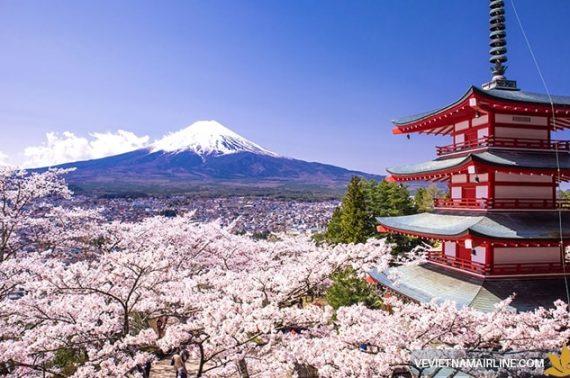 Báo giá vận chuyển hàng không tiểu ngạch bao thuế từ Nhật Bản về Thanh Hóa