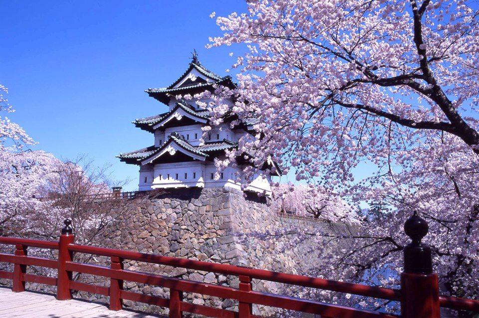 Chuyển phát nhanh đi Nhật Bản (Japan) giá rẻ, uy tín