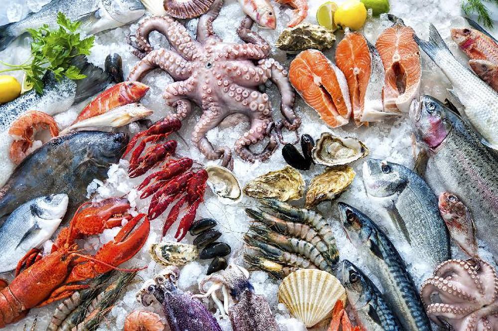 Vận chuyển thủy sản, hải sản đông lạnh từ Việt Nam đi nước ngoài với giá rẻ