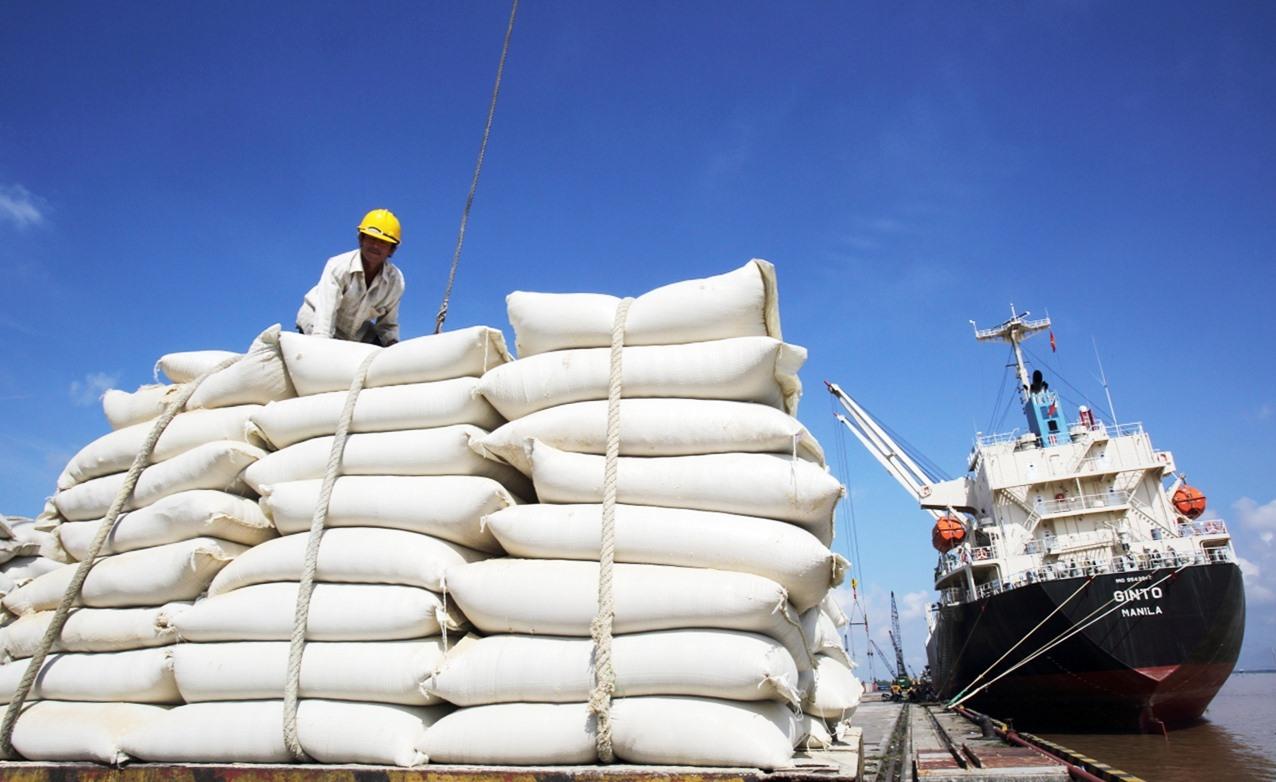 Xuất khẩu gạo gặp khó